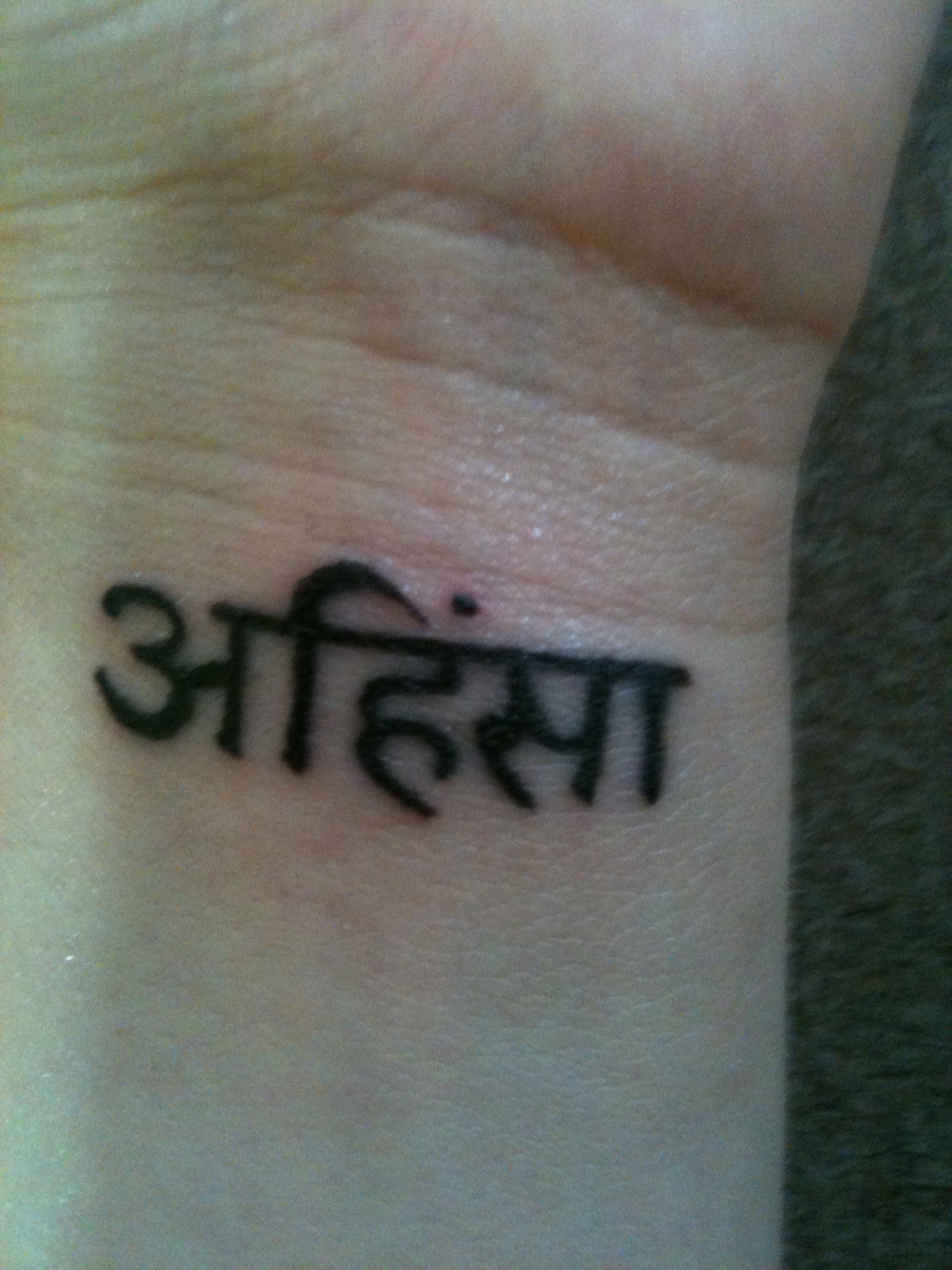 ahimsa meaning in english